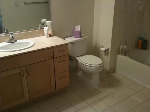 Empty Apartment Bathroom interesting empty apartment bathroom page 119 inside rental ideas