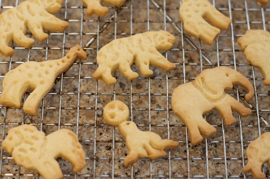 Animal shaped cookies recipes